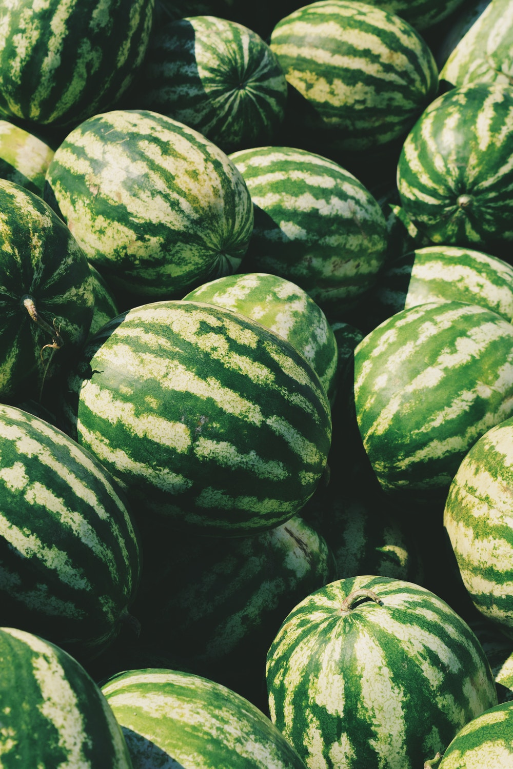 5 Ways to Use Watermelon Rinds