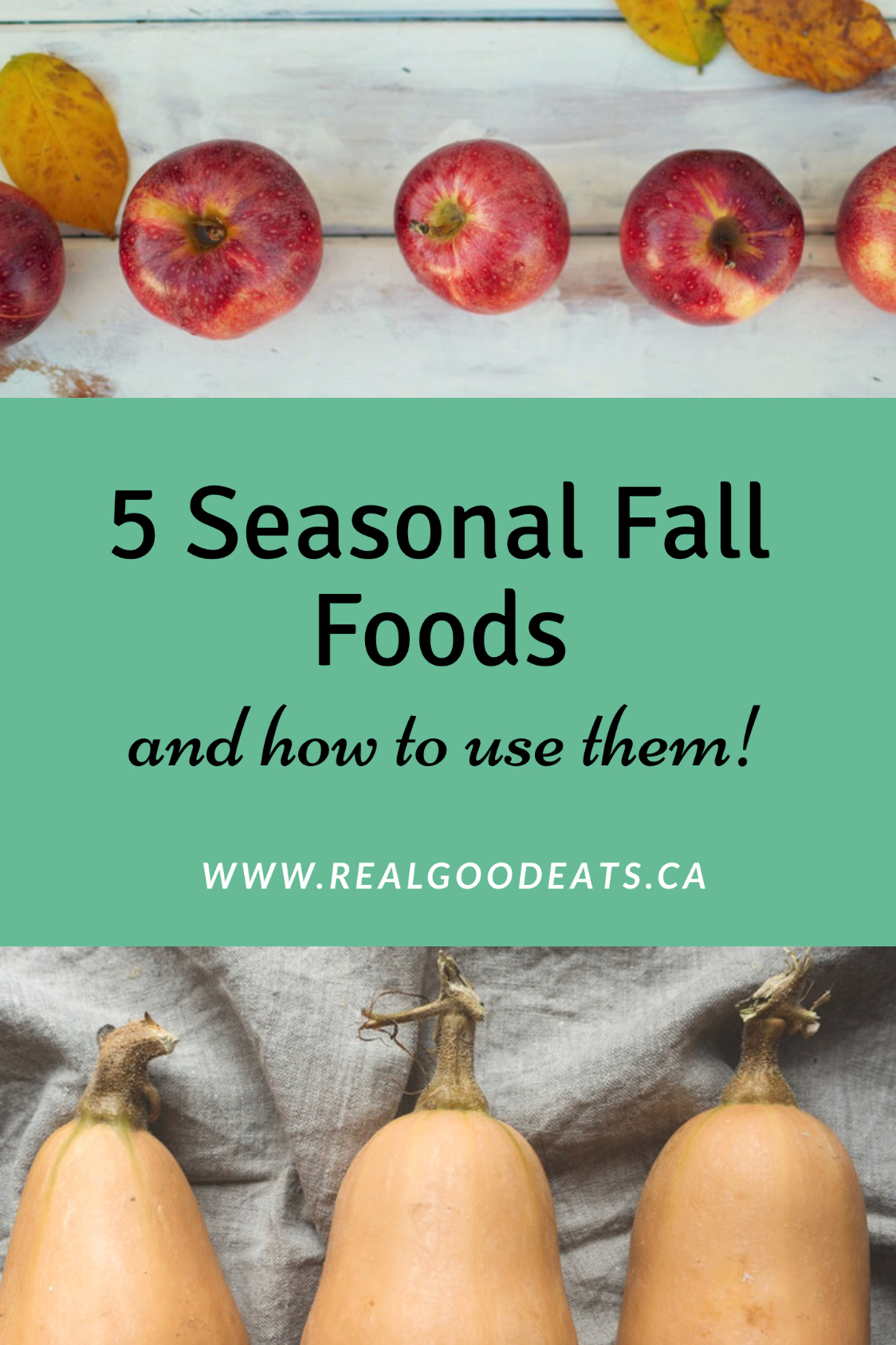 5 seasonal fall foods and how to use them blog graphic