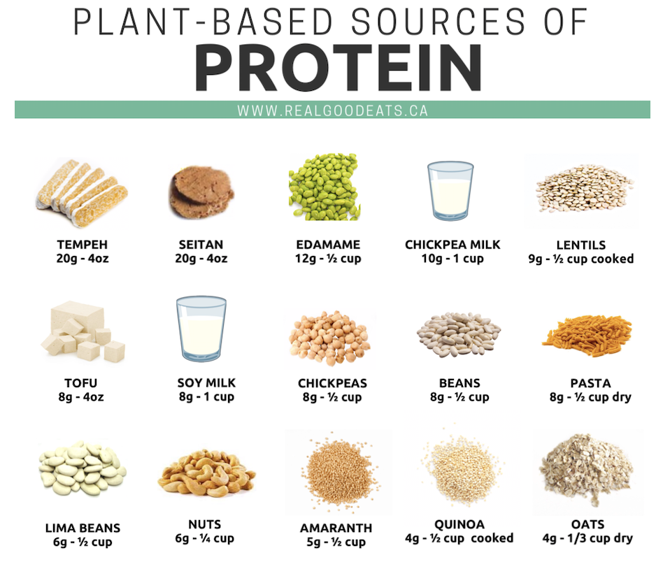 plant-based sources of protein - preview