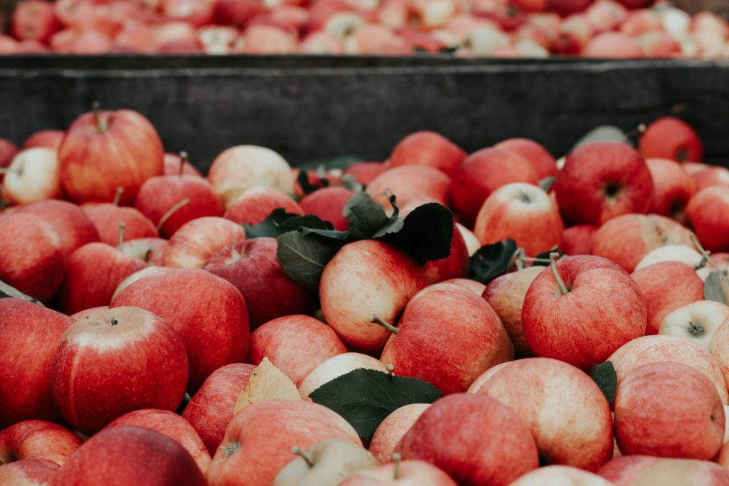 seasonal fall foods and how to use them - apples