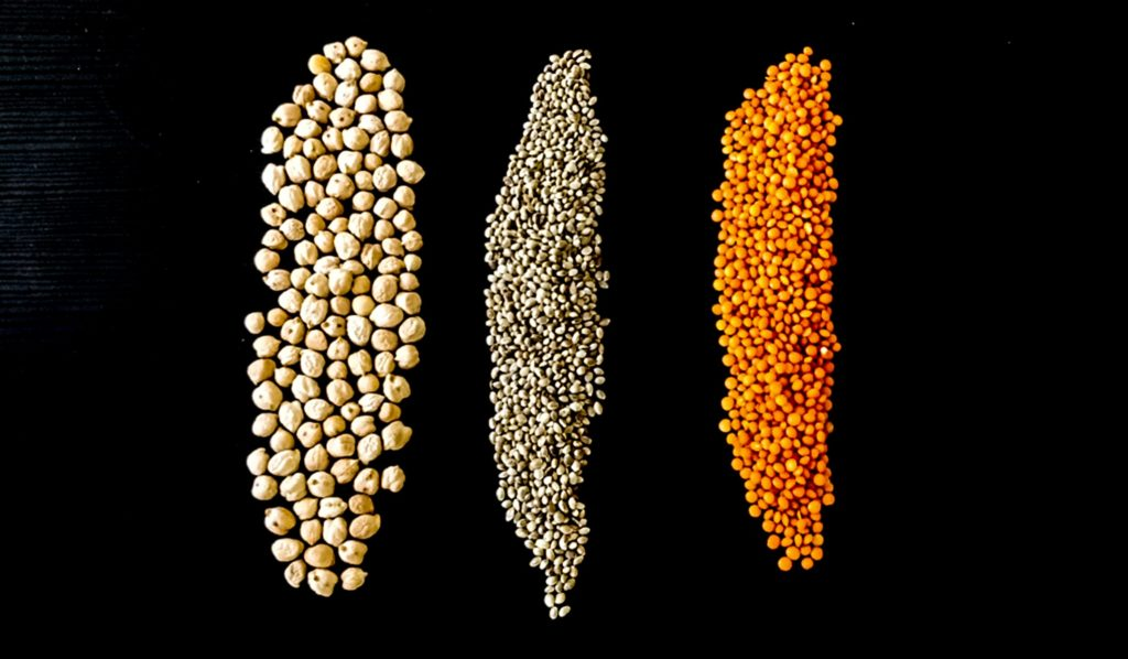 bean and lentils