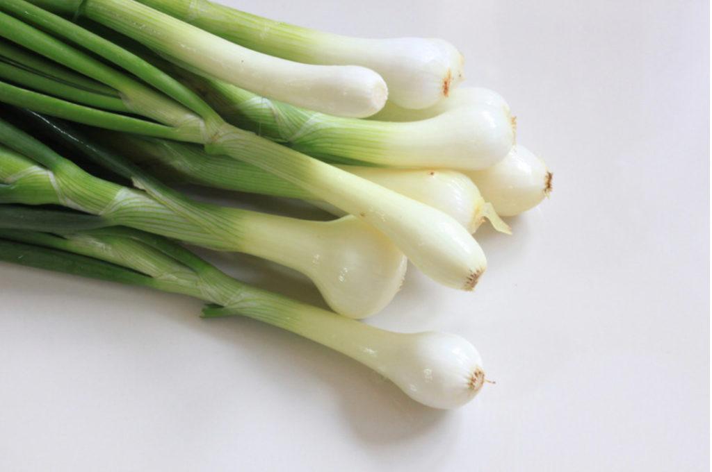 fall foods - green onion
