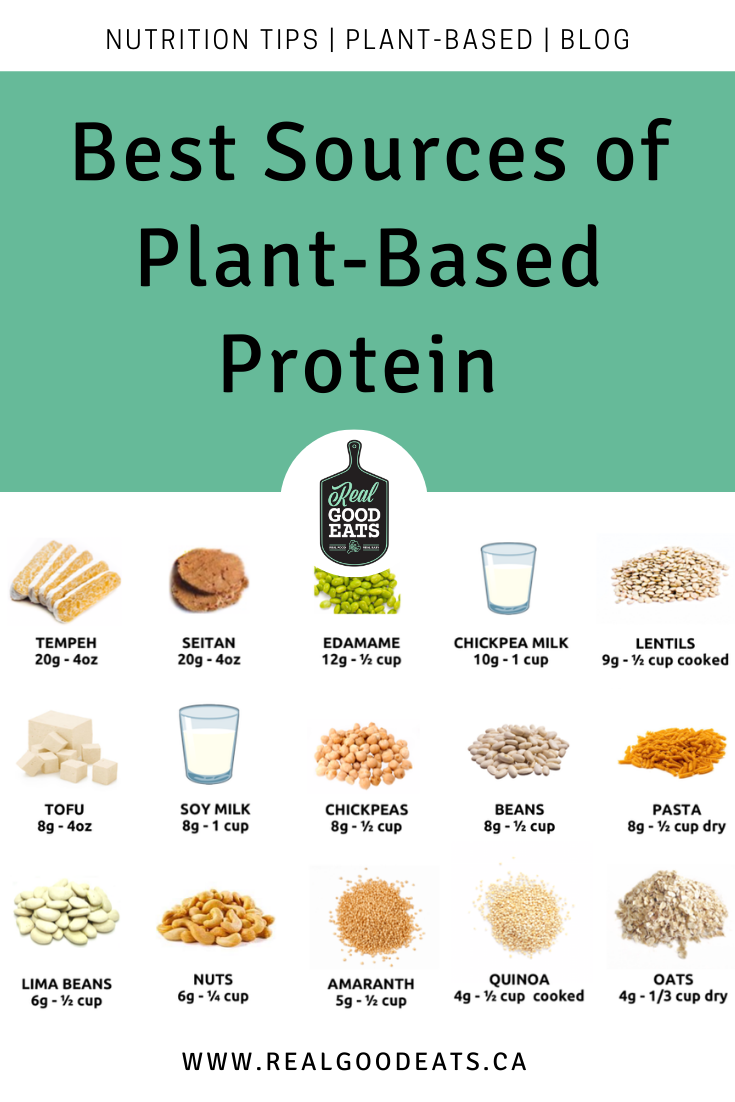 Best Sources of Plant-Based Protein